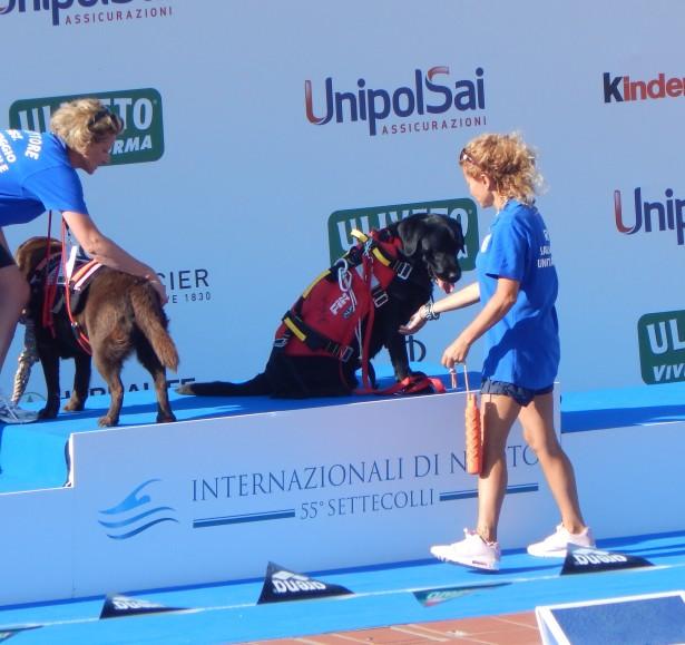 Nuota come un cane - Settecolli 2018 Laura Vergani